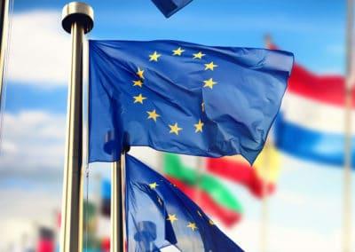 EU Government Case Study
